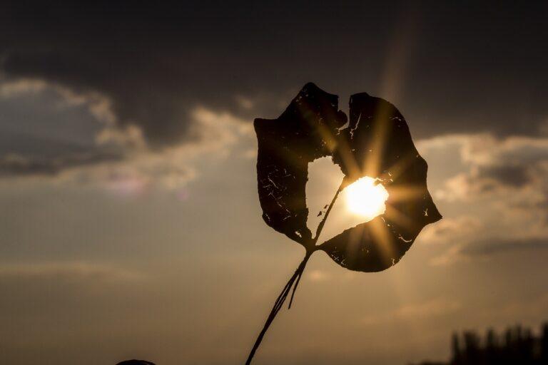 Coach Carter - Motivation - Stärke - Licht - Angst - Erlaubnis